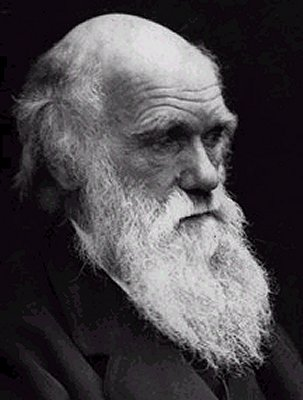 http://timnovate.files.wordpress.com/2009/06/charles_darwin_l1.jpg
