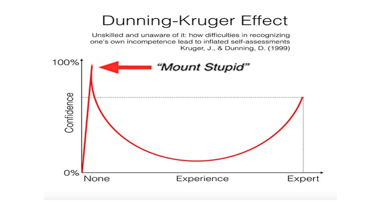 the effects of stupidity The dunning-kruger effect (also mount stupid or smug snake), named after david dunning and justin kruger of cornell university, occurs where people fail to adequately assess their level of.